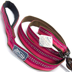 Coastal Pet dog leash