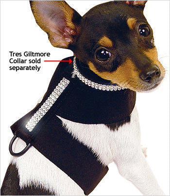 Fox Terrier wearing Susan Lanci Giltmore Tinki Harness