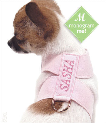 Chihuahua in Puppy Pink w Rose Thread