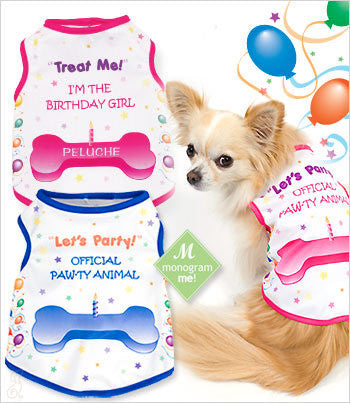 dog birthday party shirts