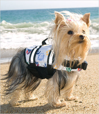 Yorkie in Dog Life Jacket