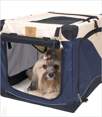 Havanese inside Soft Side Crate