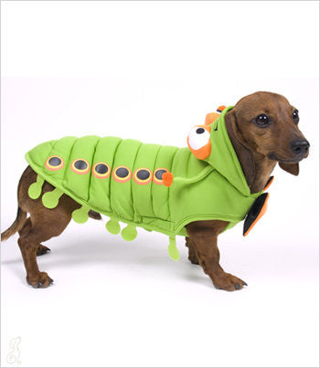 Catapillar Dog Costume