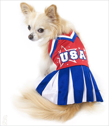 Olympic Cheerleader Dog Costume