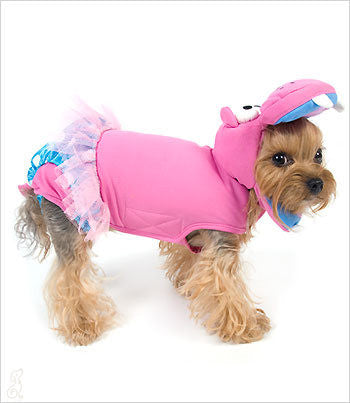 pink hippo dog costume on yorkie