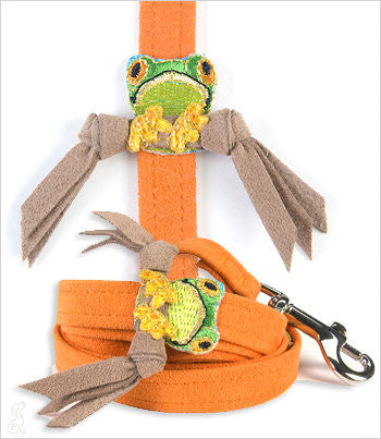 orange dog leash with tree frog