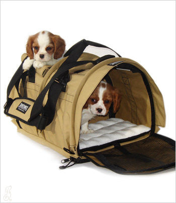 SturdiBag Dividd pet carrier with 2 puppies