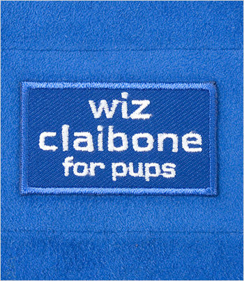 Wiz Claibone dog belly band