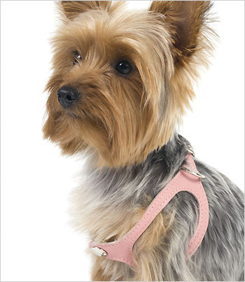 Scrappy Buttery Soft Choke Free Step-In Harness