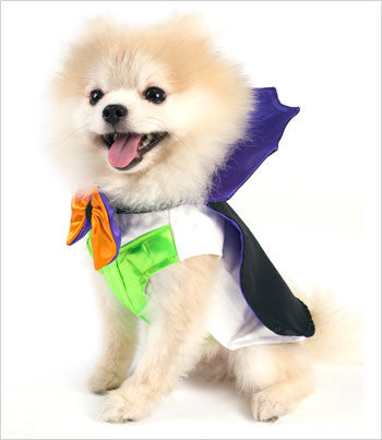 Side View of Dogula Dog Costume