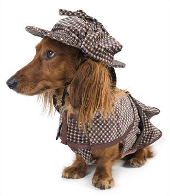 Sherlock Hound Dog Costume