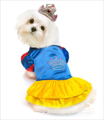 Snow Princess Dog Costume
