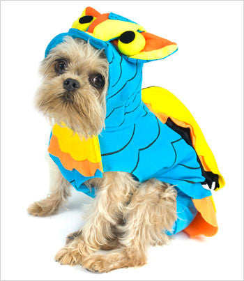 Brussels Griffon Wearing Owl Dog Costume