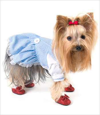 Dorthy Dress Dog Costume
