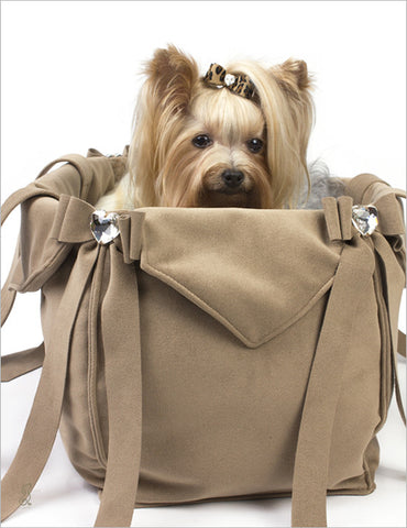 Yorkie inside Susan Lanci Tail Bow Carrier
