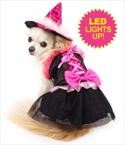 Pink Bow LED Witch Dog Costume
