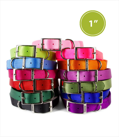 Nylon Dog Collar - 1 inch