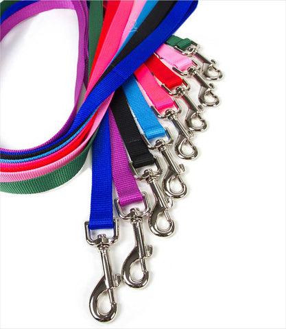 3-4 inch wide nylon dog leashes - group
