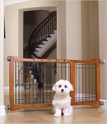 maltese in front of dog gate