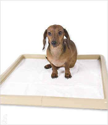 Little Stinker Dog Potty Pad Holder