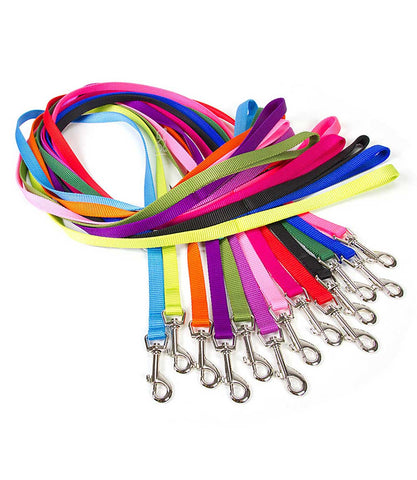 5x8 inch wide nylon dog leashes - group