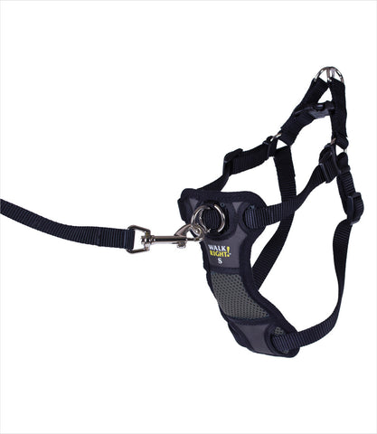 Walk Right Harness to Leash Connection