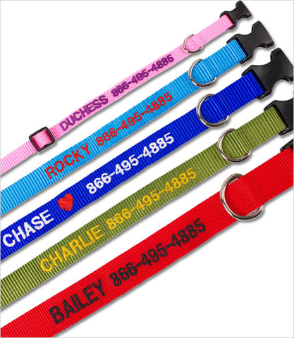 Coastal Personalized Dog Collar
