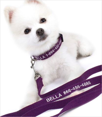 Personalized dog leash with white monogram