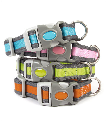 Pet Attire Pro Dog Collar Group