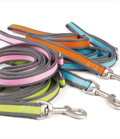 Pet Attire Pro Dog Leash Group