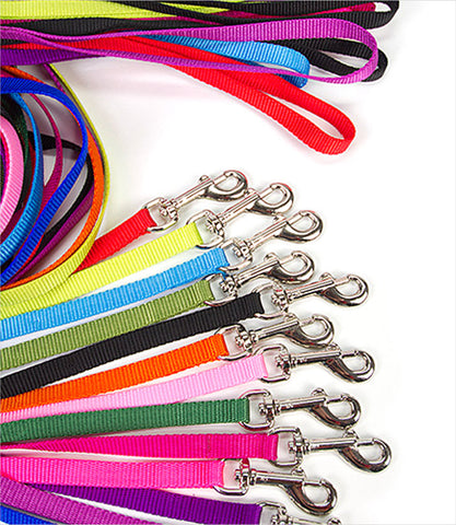 group photo nylon dog leashes 3/8 inch