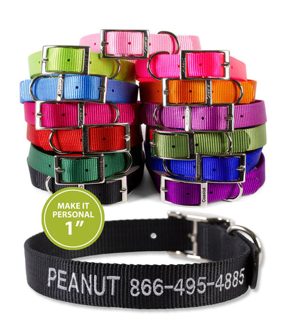 Personalized Dog Collar - 1 inch