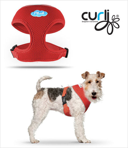 Curli Dog Harness Red