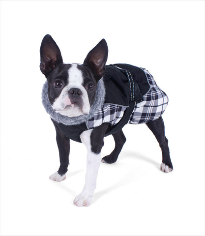 Boston Terrier in Black Plaid Alpine All-Weather Dog Coat