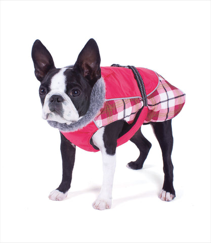 Boston Terrier in Rasperry Plaid Alpine All-Weather Dog Coat