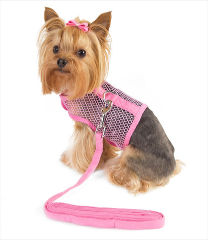Red Dog Mesh Harness with Leash