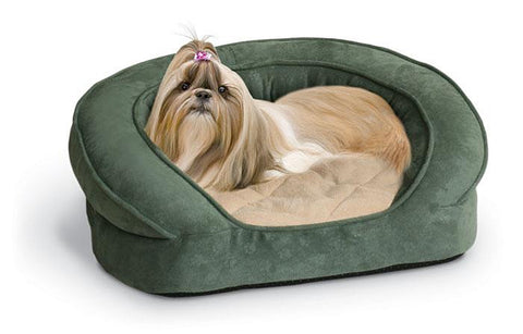 Yorkie in Ortho Bolster Bed