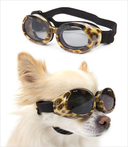 Doggles ILS Dog Sunglasses in Leopard