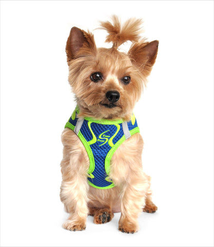 Dog Harness - Neon Sport in Colbalt Blue