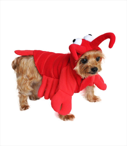 Lobster dog costume - front