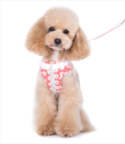 EasyGo Harness and Leash for Small Dogs in Flower Bling