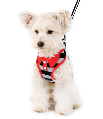 EZGo Polo Dog Harness