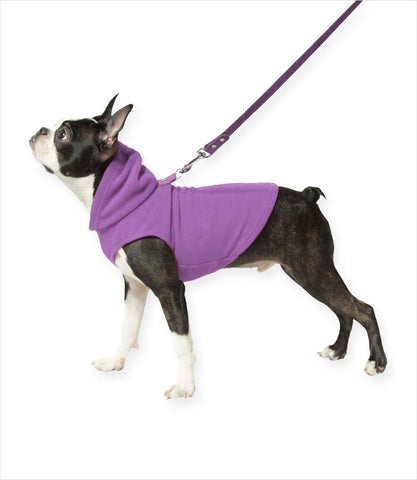 Boston Terrier in the Purple Fleece Dog Hoodie