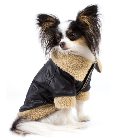 Shearling Leatherette dog jacket