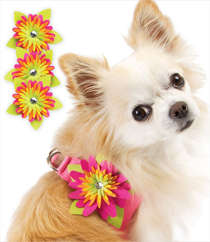 Island Flower Dog Harness by Susan Lanci