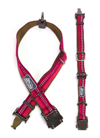 K9 Explorer Dog Collars - Berry