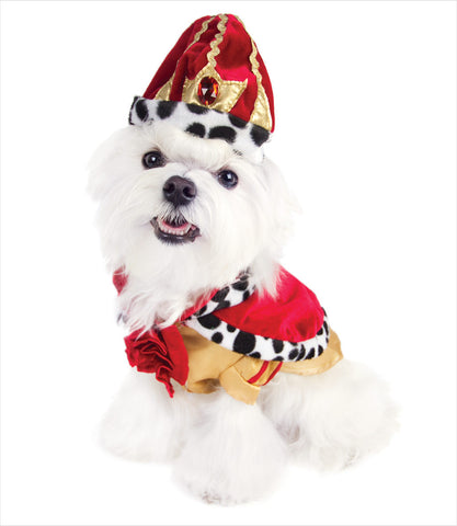 King Dog Costume