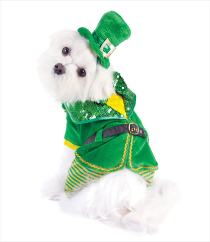 Leprechaun-Dog-Costume-Boy