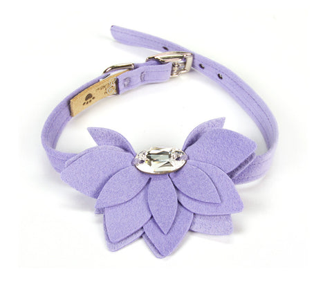 French Lavender Water Lily Dog Collar
