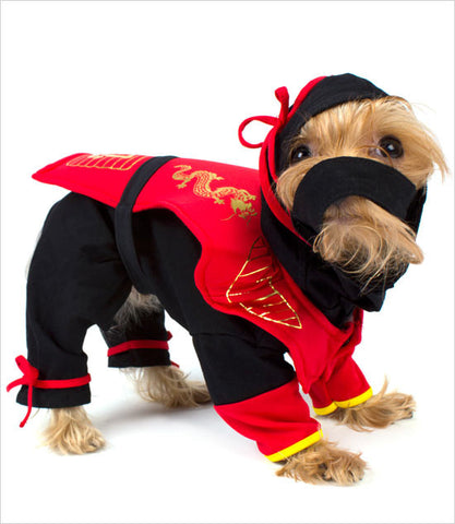 Dragon Ninja Dog Costume